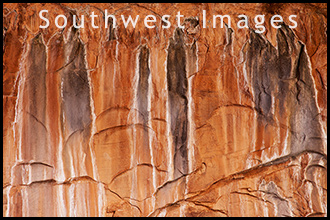 Southwest Picture Gallery