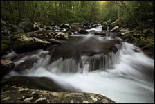 Small Falls, Middle Prong Little River, Great Smoky Mountains National Park, Tennessee