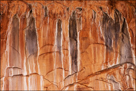Stained walls, the Narrows, Zion National Park, Utah