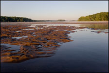 Rippled sand bar on the Wisconsin River near Portage
